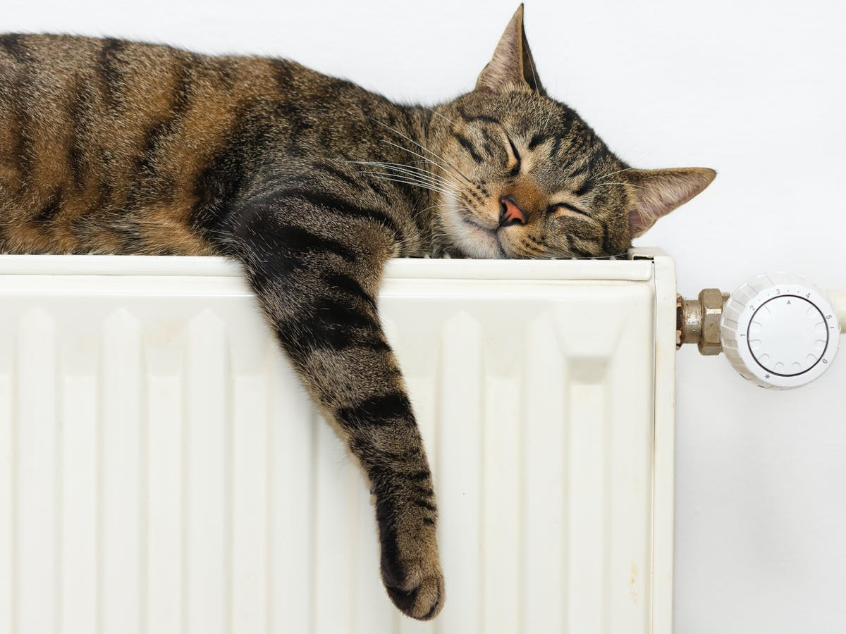 keep-your-home-warm-and-cosy-even-when-its-cold-outside